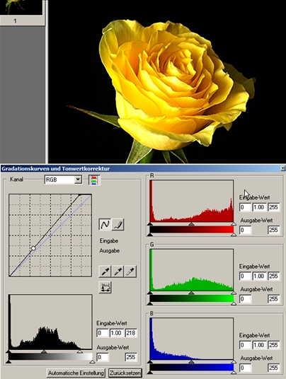 21 rose Histogramm RGB-Ausgleich-