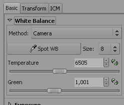 RawTh 13 Weissbalance-